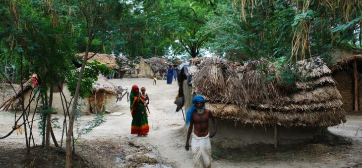 INDIA: Five-year-old Musahar boy may die from starvation in Raitara of Pindra village in Varanasi in the coming days